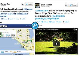 Golden retriever-hosted video vs. location sharing via Glympse