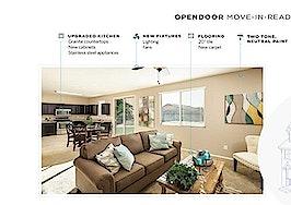 Big data home flipper unveils homebuying platform