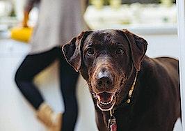 Pets affect days on market, buyers' interest