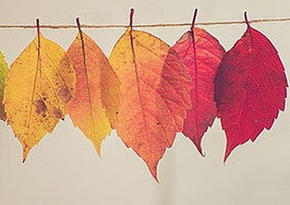 5 ways to take advantage of fall and make your yearly goals