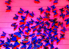 Trouble getting past small talk? 7 steps for becoming a social butterfly