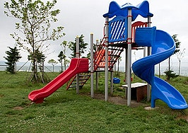 Family hit with $100K HOA suit due to playscape for terminally ill son