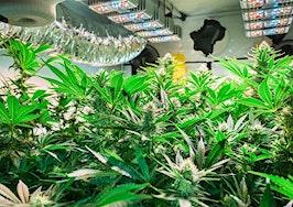 Marijuana and real estate are gradually becoming intertwined