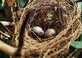Knock launches new sale-leaseback program, Knock Nest