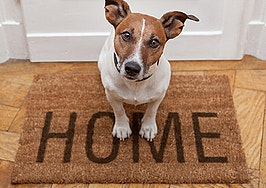 Here's why housing needs to be more pet-inclusive now