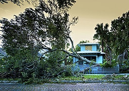 78% of buyers consider natural disaster risk when house hunting